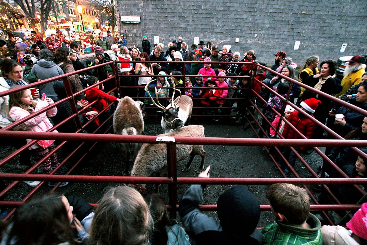 Families gather around the reindeer pen Thursday during Glenwood's Day Out Downtown Grand Holiday.
