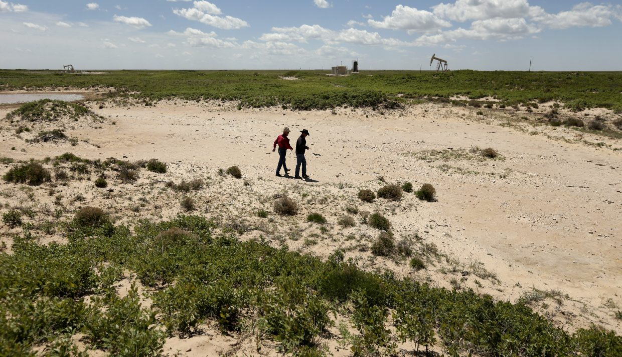 In this April 24, 2015 photo, Carl Johnson, left, and his son, Justin, walk across a stretch of pasture left barren after an oilfield wastewater spill on their ranch near Crossroads, N.M. The ranchers have been fighting oil companies for decades over spills of briny, polluted water.