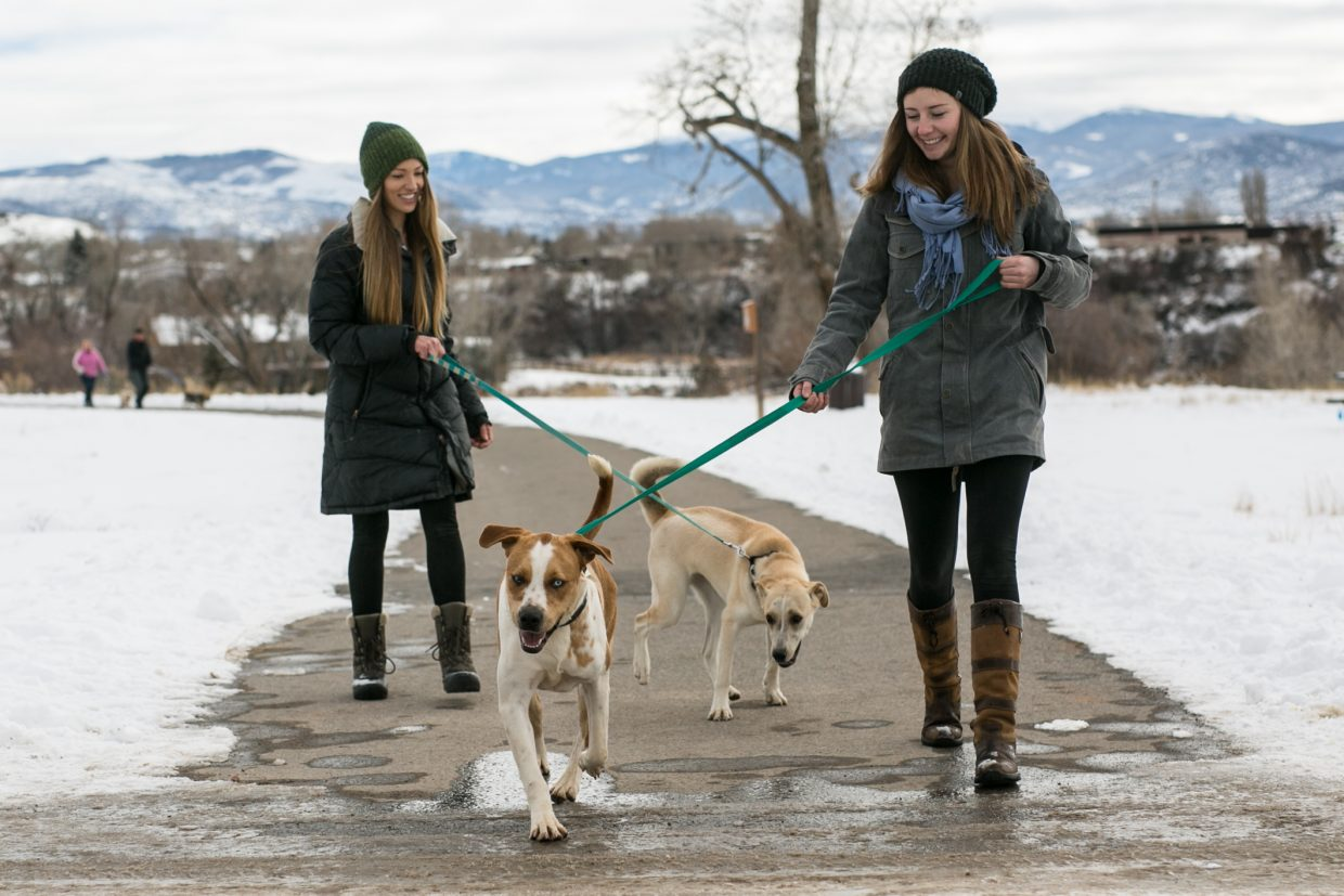 Vail locals Kelsey Headley, left, and Maeve Rice take two eager dogs for a walk from the makeshift shelter at the Eagle Fairgrounds on Friday.  Both of the girls found out about the necessity for volunteers on Facebook.