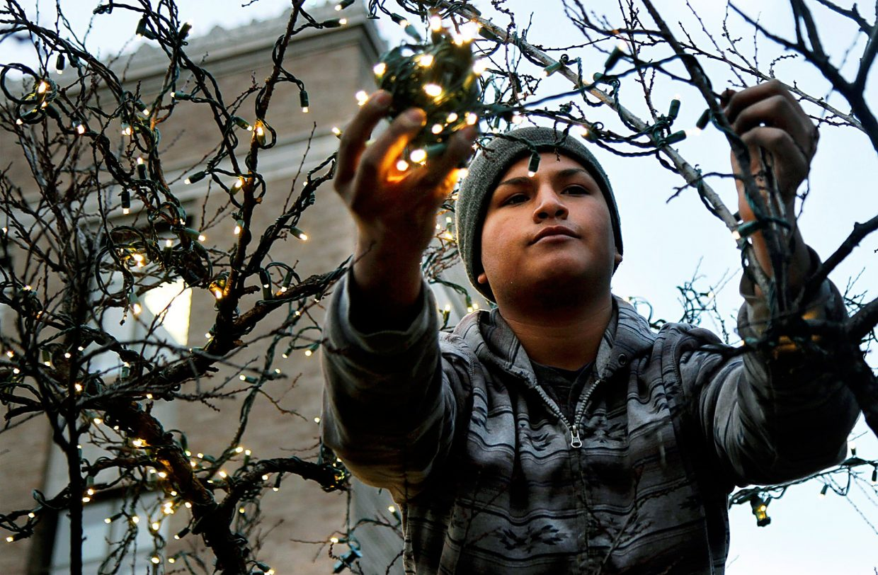 Vico Celestino of Jim Waters Property Maintenance and Christmas Decor stands on a ladder Thursday evening as he decorates a tree in front of the Garfield County Building.