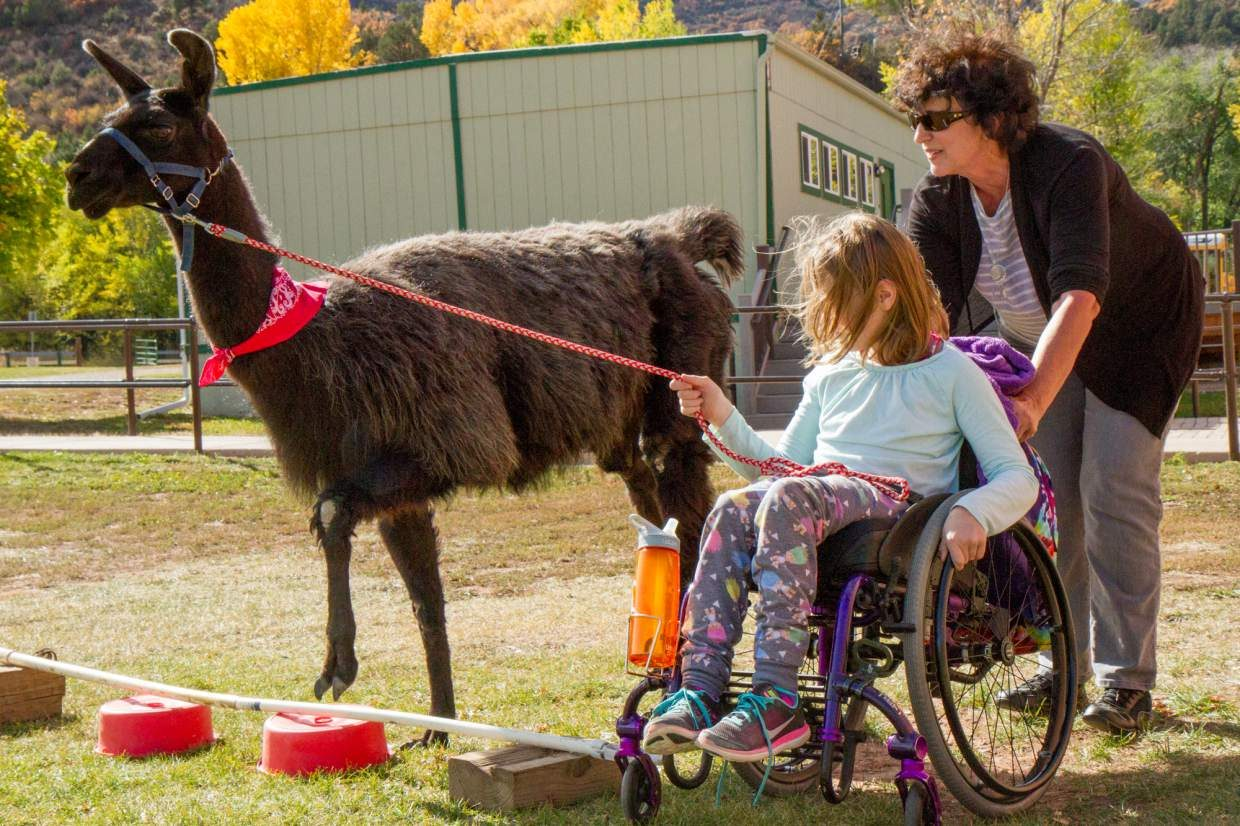 Barb Parquette helping Sopris Elementary fifth grader lead her llama through the obstacle course on Wednesday afternoon.