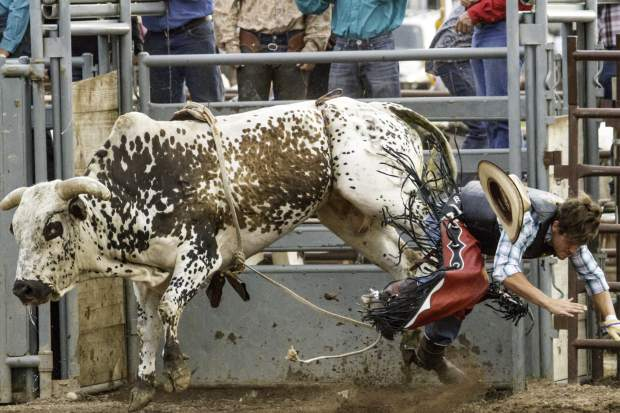 Zach Jammaron was knocked off of bull Blind Side during the second week of the 2016 Wild West Rodeo in June.