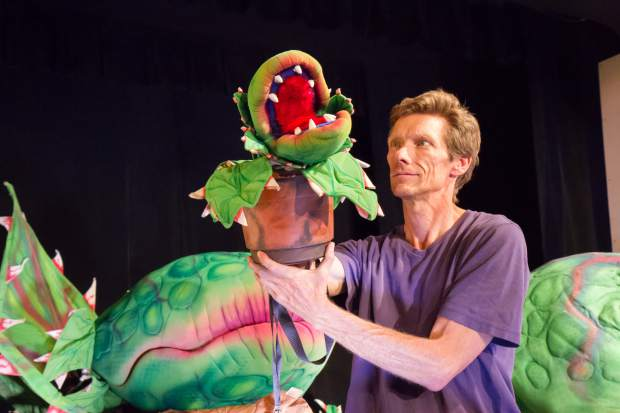 Seymour is enthusiastic about his new plant, but Audrey II doesn't appear to be anything special. That is, until Seymour places her on a counter and the plant comes to life. The puppet has a false bottom, and so an actor's hand can slip inside to animate the character. Weight: 1.25 pounds