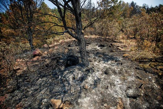 A burnt area above the Wilds neighborhood in Basalt from the Lake Christine Fire on Sunday.