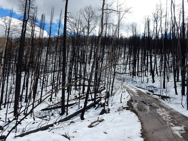 The landscape on Basalt Mountain showed a stark contrast in October, with snow-covered slopes and fire-blackened tree trunks. Projects are planned to mitigate flooding and debris flows from the fire scar.