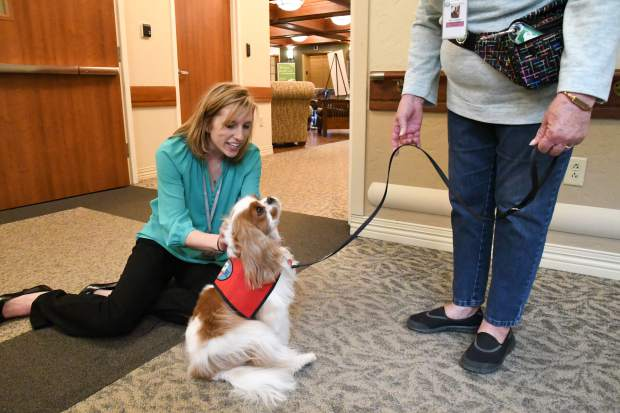 Kati Ledall interacts with Finnegan, who is part of the Heeling Partners therapy dogs while he visits with patients in acute care.