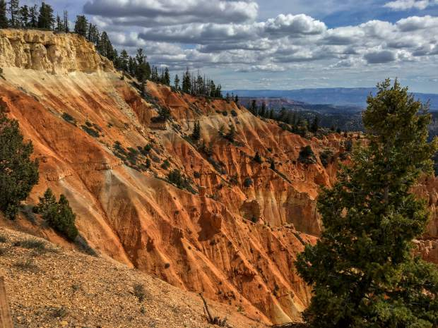 The array of yellows and oranges contrast with the green trees near the Natural Bridge viewing area of Bryce Canyon National Park.