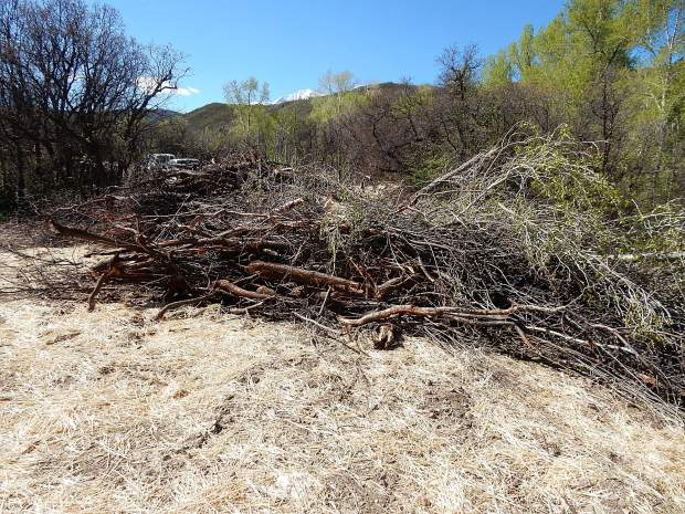 The construction crew piled brush between the fresh-cut swath and Prince Creek Road so vehicles wouldn't mistake the disturbed area as a road.