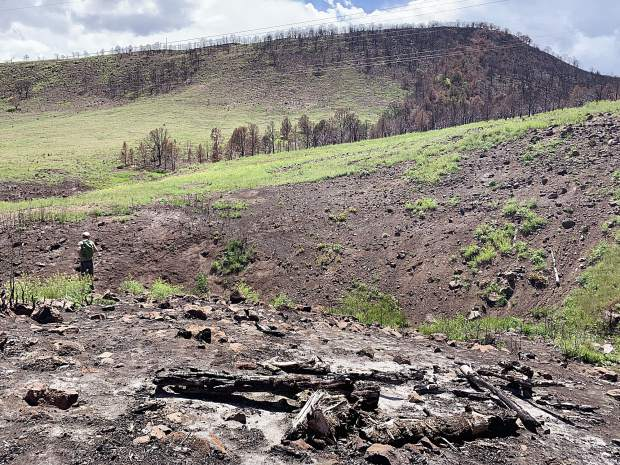 Parts of the Lake Christine Fire burn scar cannot be reseeded by air or by ground equipment because of obstacles such as power lines. Volunteers will be enlisted June 15 for seeding by hand.