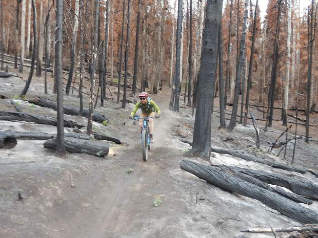 Zach Nichols zips down the Mill Creek Trail Friday on Basalt Mountain. The trail has everything from apocalyptic stretches to unsinged meadows after being in the middle of the Lake Christine Fire last summer.