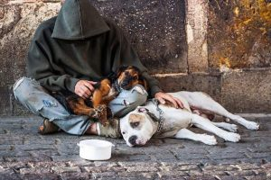 Glenwood City Council approves private security to help combat homeless nuisance issues